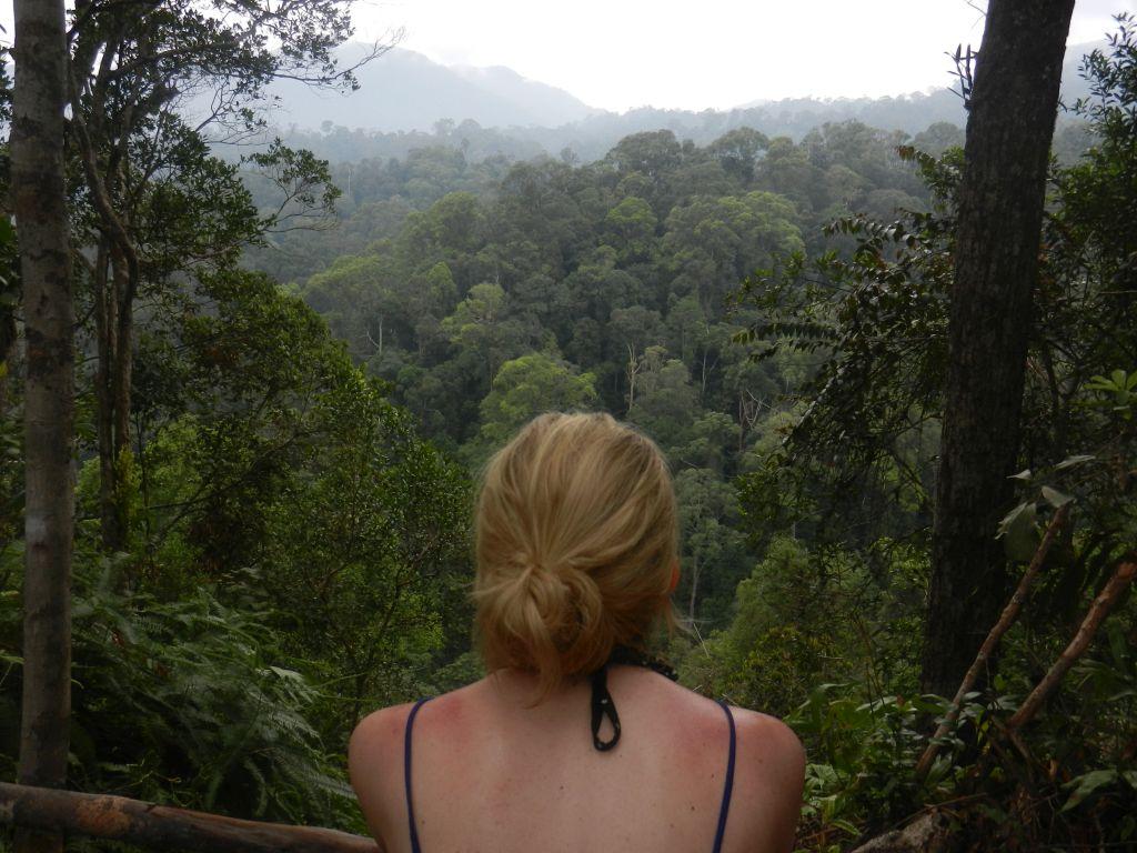 Sumatra Trekking Orang Utans