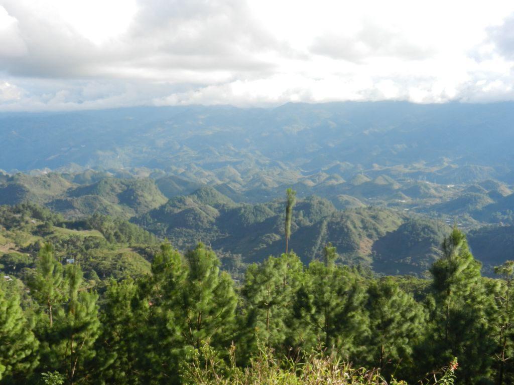 Dschungel Semuc Champey