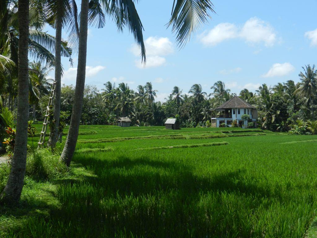 Indonesien Reiseziele