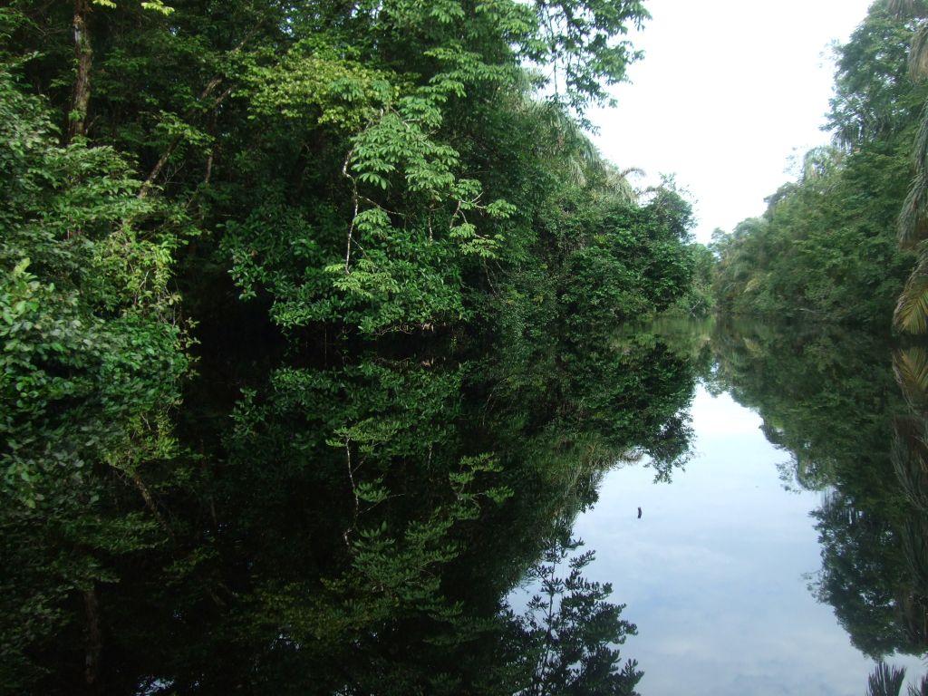 Kanäle Tortuguero