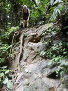 Dschungeltrekking