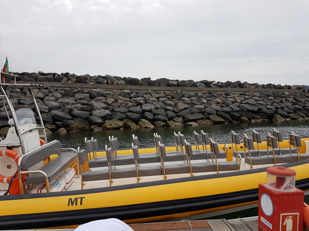 Schlauchboot Whale Watching São Miguel