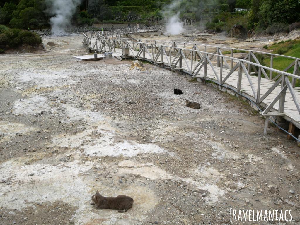 Heiße Quellen Lagoa das Furnas