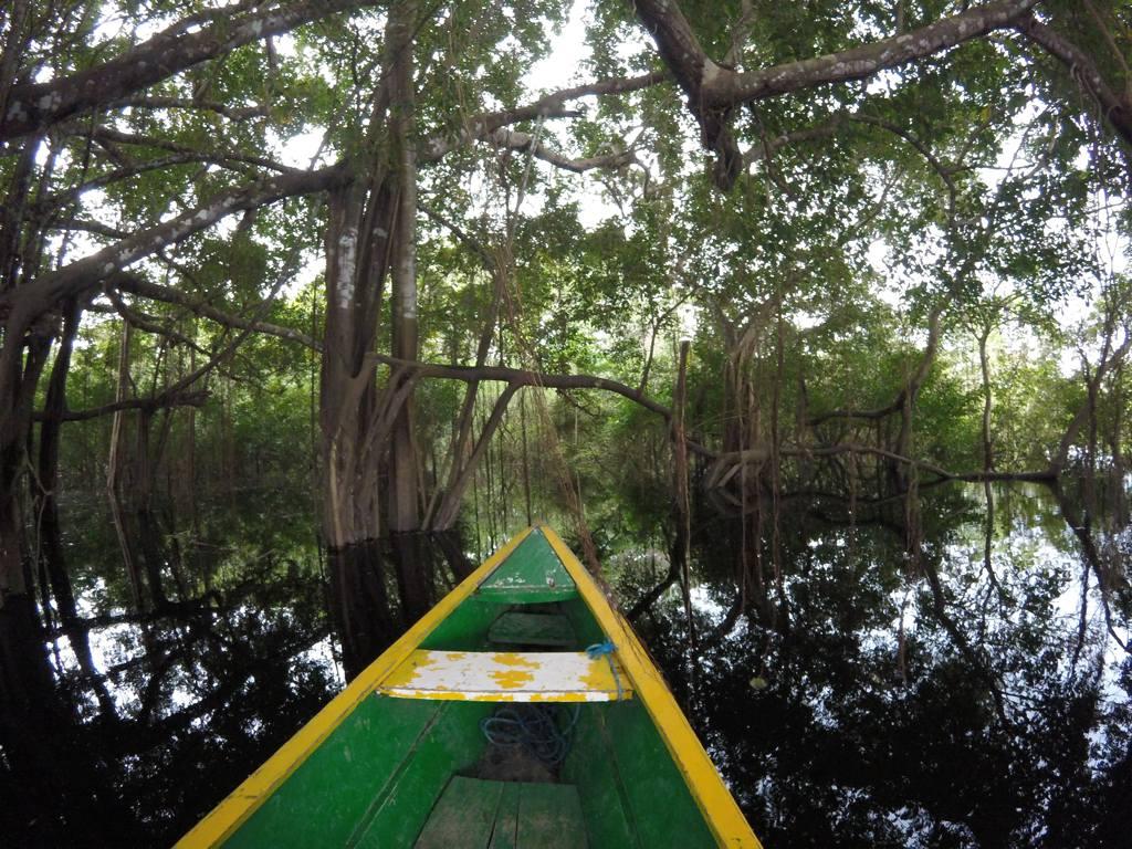 Amazonas Kolumbien Bootsfahrt