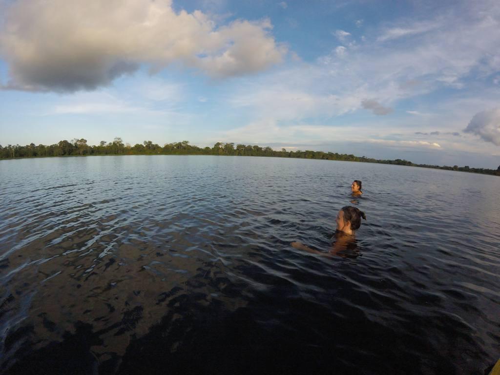 Amazonas Rosa Delfine
