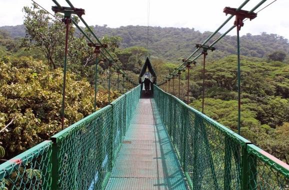 Costa_Rica_Baumwipfelpfad