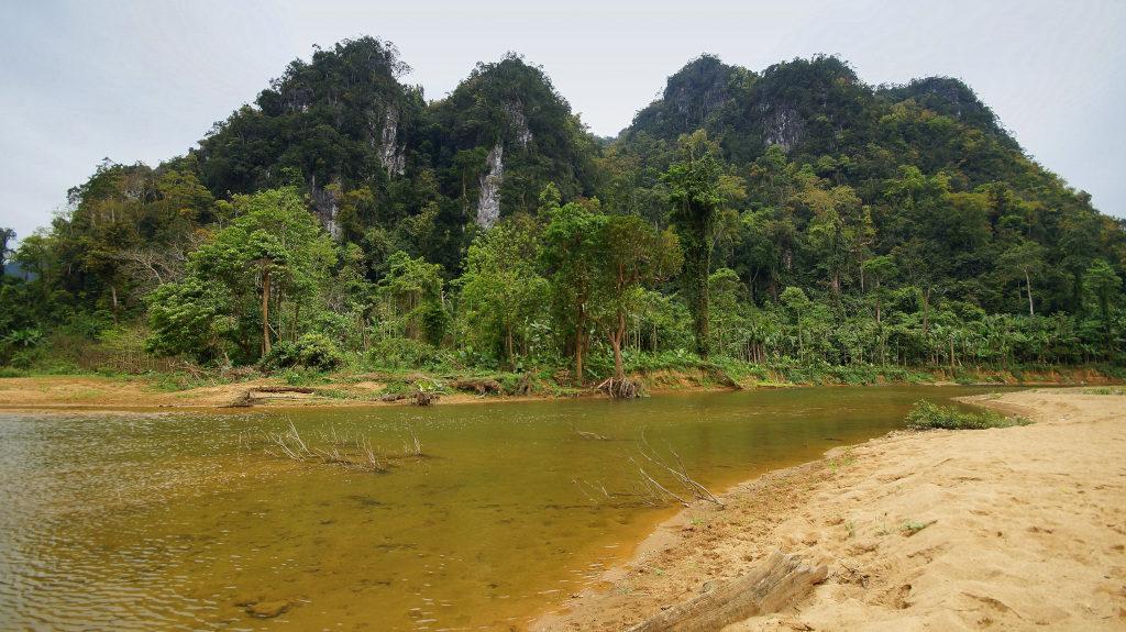 Dschungel-Trekking Vietnam
