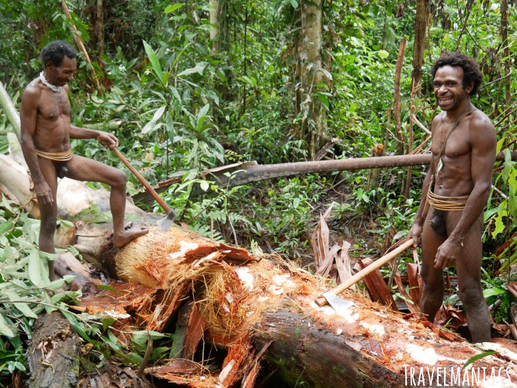 Sago West Papua