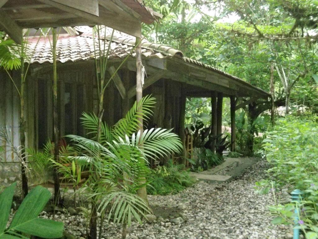 Dschungel Hotel Costa Rica