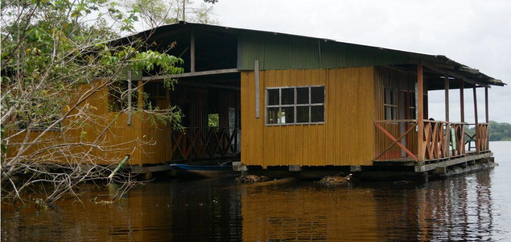 Bewachung Amazonas