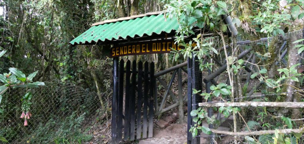 Wanderweg Isla Corota Laguna la Cocha