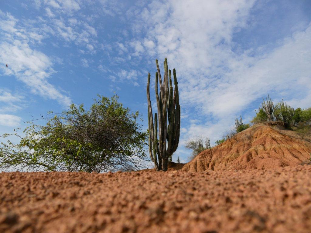 Wüste Kolumbien