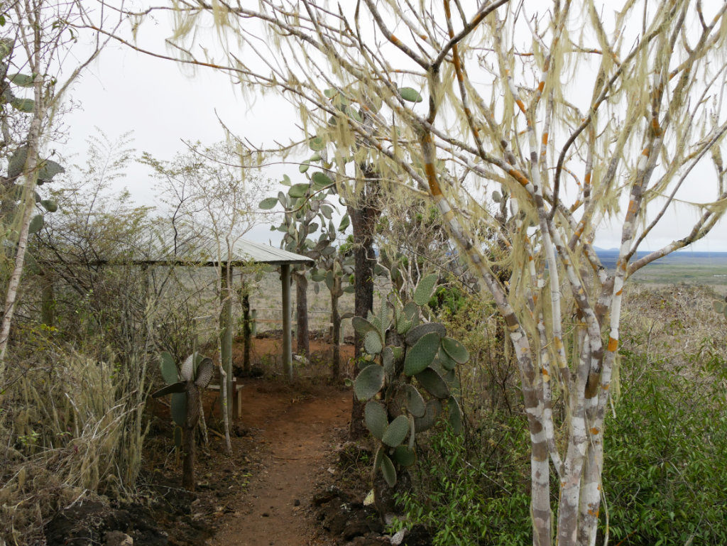 Aussichtspunkt Muro de las Lagrimas Natur