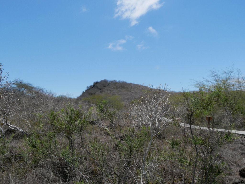 Cerro Tijeretas San Cristobal