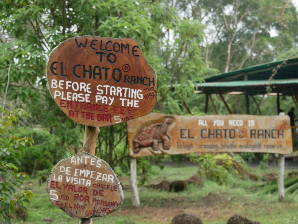 El Chato Ranch Galapagos auf eigene Faust