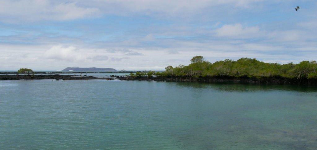 Galapagos auf eigene Faust Concha Perla Isabela