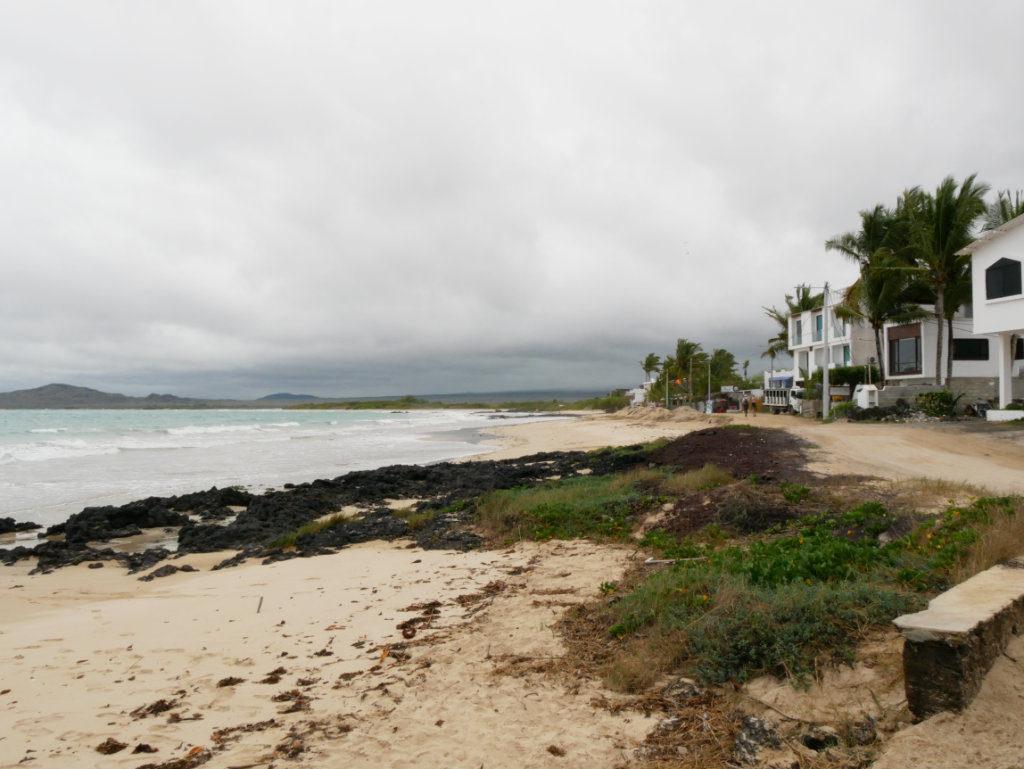 Galapagos auf eigene Faust Isabela