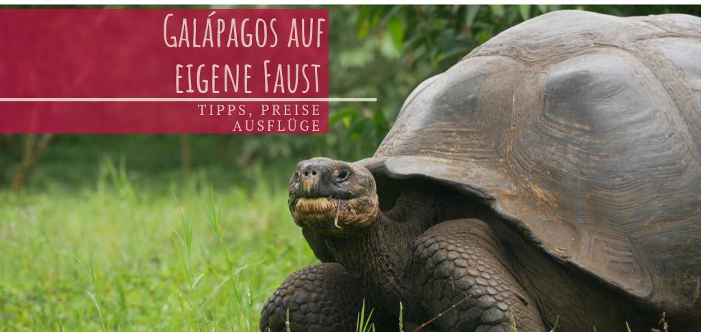 Galapagos auf eigene Faust