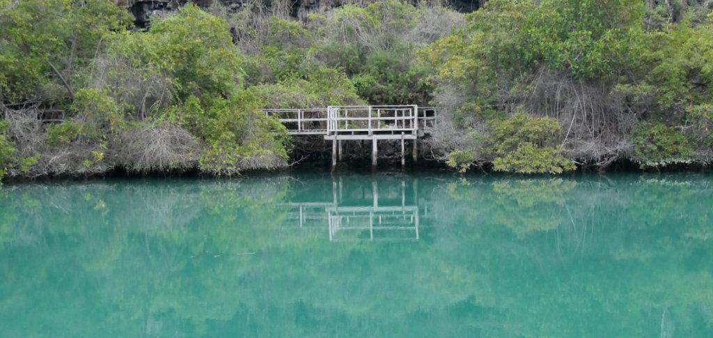 Laguna de las Ninfas Puerto Ayora