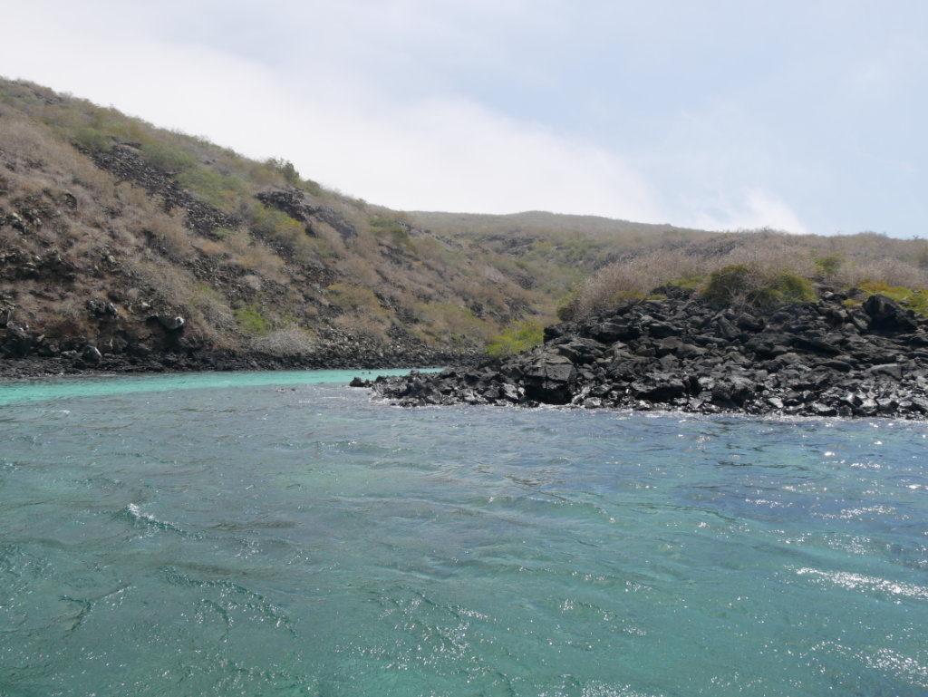 Pinzón Galapagos Schnorchelausflug