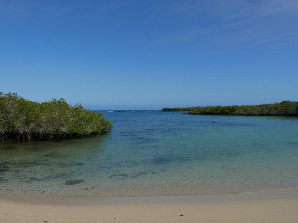 Playa Los Alemanes Santa Cruz