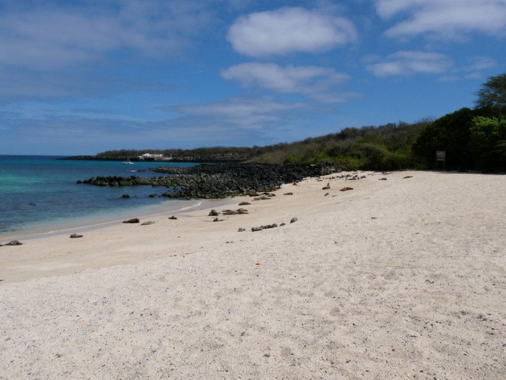 San Cristóbal Playa Mann