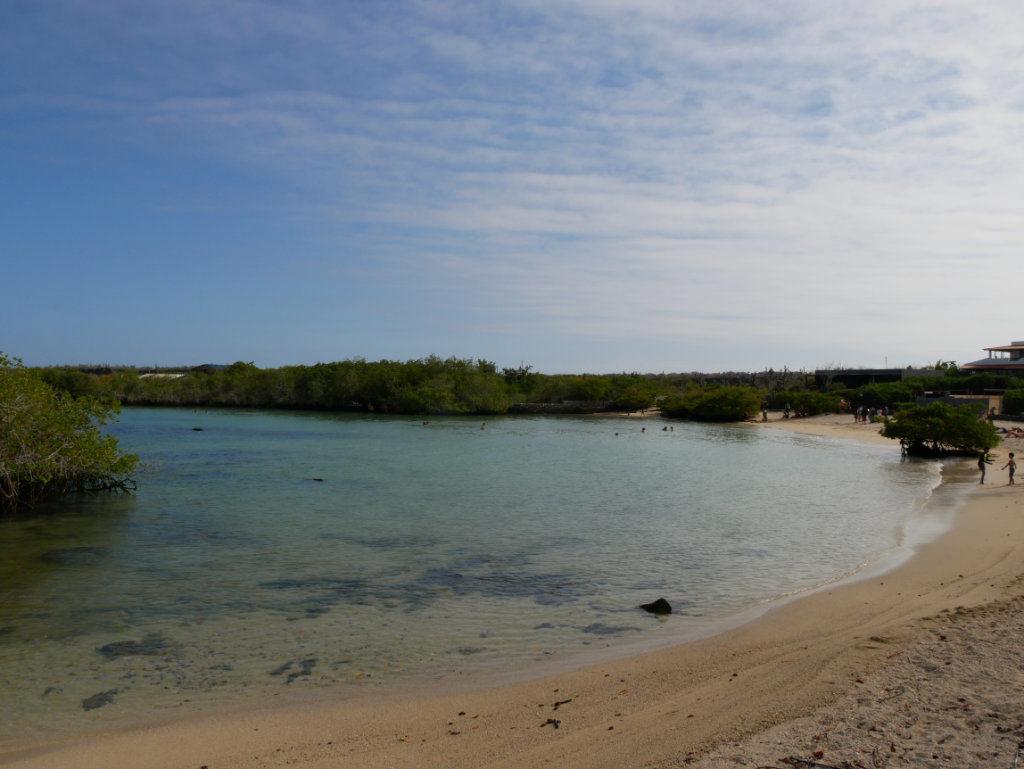 Strand der Deutschen Galapagos