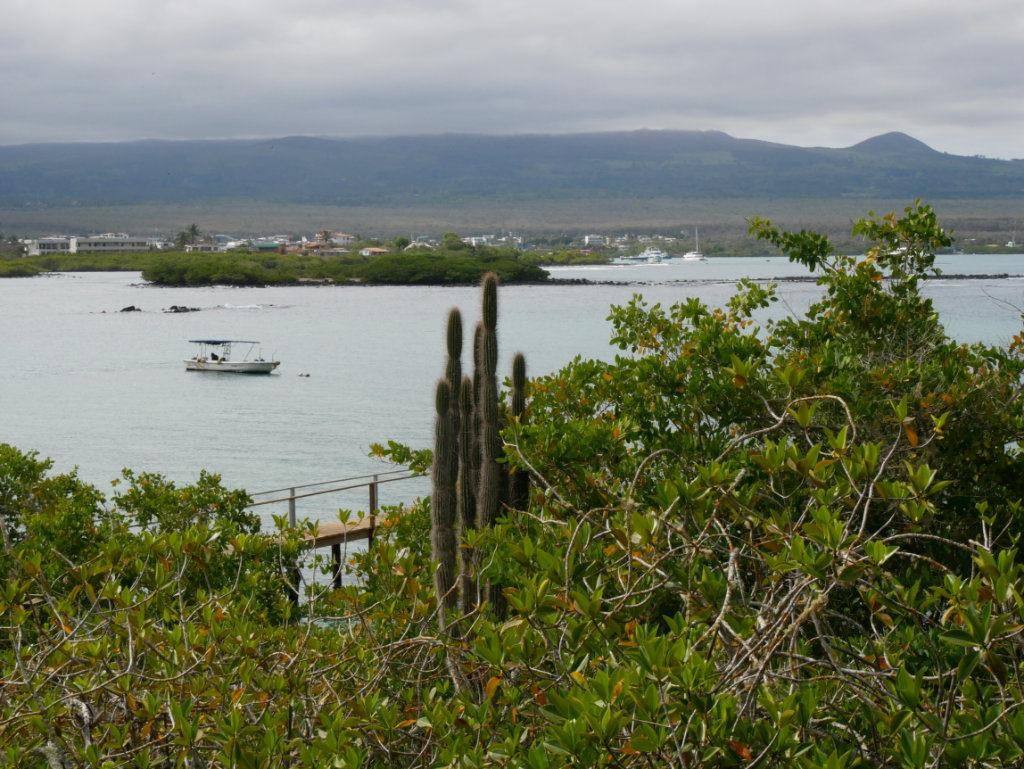 Tour de Bahía Santa Cruz